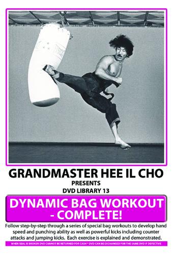 Dvd 13 Dynamic Bag Workout 59 00 A I M